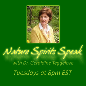 Nature Spirits Speak